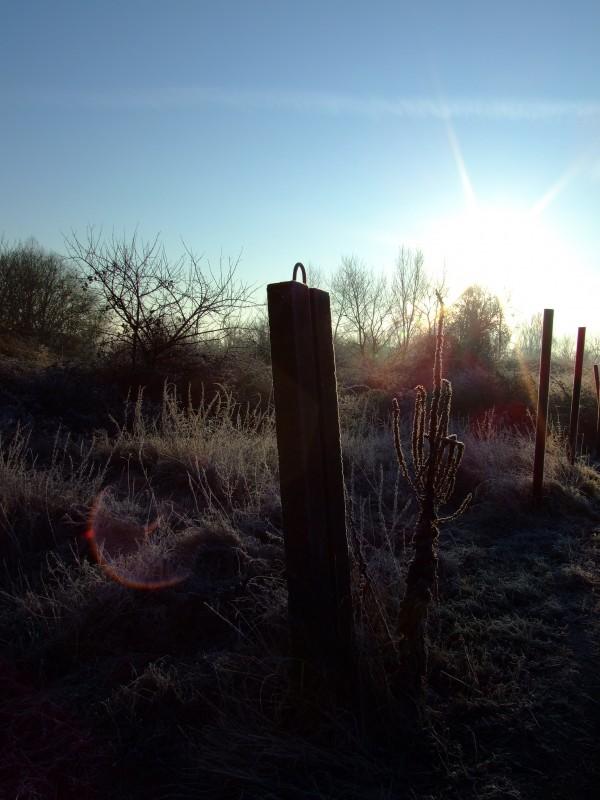 Un soleil d'hiver